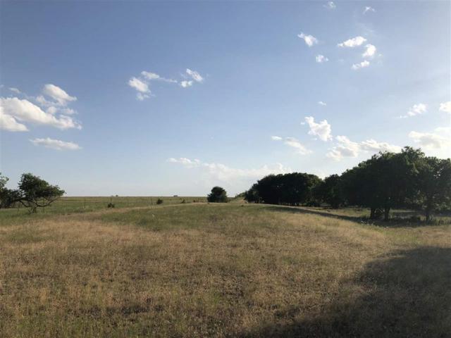 1669 Rattler Hill Road, Mcgregor, TX 76657 (MLS #175518) :: Magnolia Realty