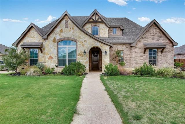 309 Desert Sky Drive, Mcgregor, TX 76657 (MLS #182445) :: Magnolia Realty