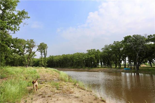 TBD Lake Felton Parkway, Axtell, TX 76624 (MLS #189524) :: Magnolia Realty