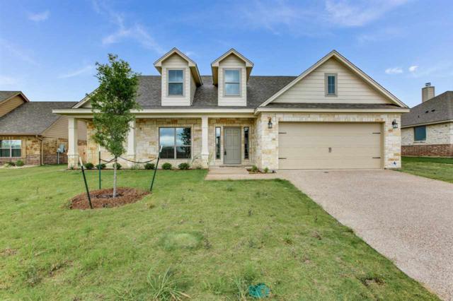 374 Violet Drive, Robinson, TX 76706 (MLS #173488) :: Magnolia Realty