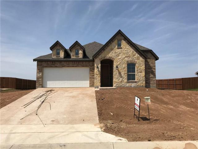 300 Oak Meadow Trail, Mcgregor, TX 76657 (MLS #174412) :: Magnolia Realty