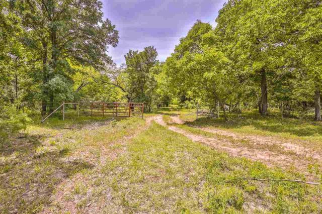 J J Flewellen Road, Waco, TX 76707 (MLS #174728) :: Magnolia Realty