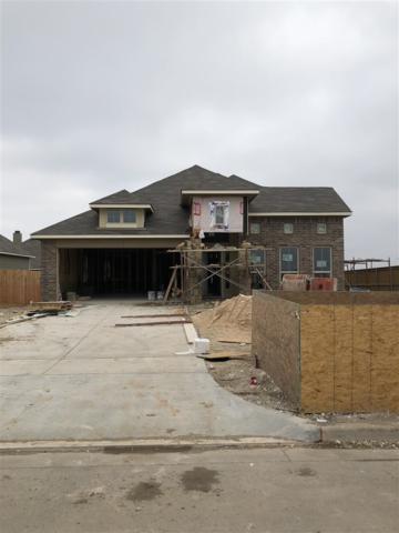 2828 Beutel Rd, Lorena, TX 76655 (MLS #173052) :: Keller Williams Realty