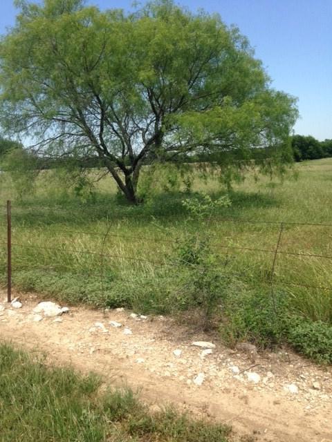 18087 N Hwy 6, Valley Mills, TX 76689 (MLS #175217) :: Magnolia Realty