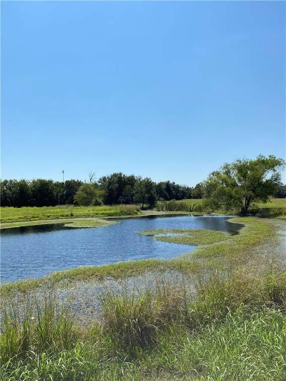 24.722 Acres Bielamowicz Road - Photo 1