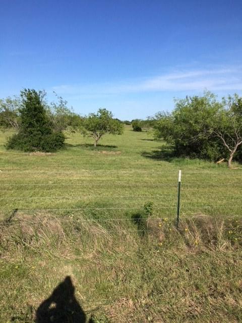 tbd Fm 3118, Clifton, TX 76634 (MLS #172106) :: Magnolia Realty