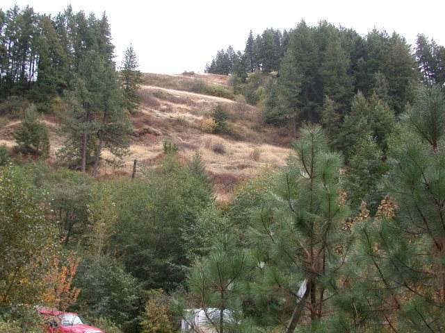 000 Scott Canyon Road - Photo 1