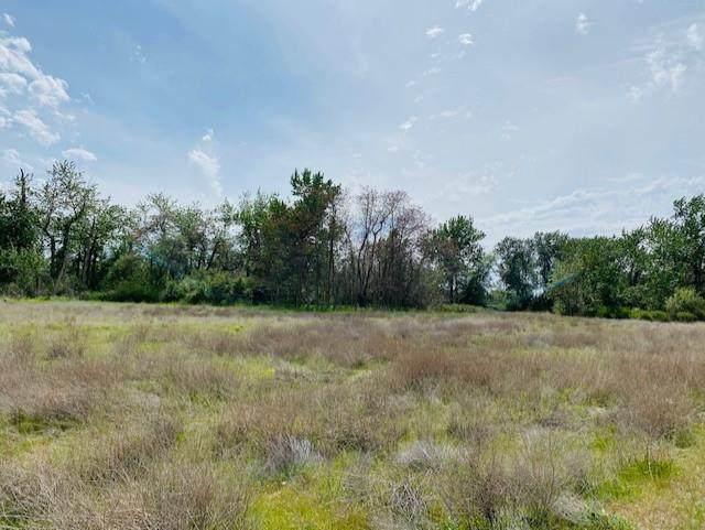 TBD Mill Creek Road - Photo 1