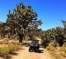 26525 Yucca Road - Photo 8