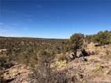 Lots 713,715,716 Greenview Ranches - Photo 5