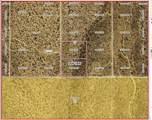 LMRO #9 S-17 LOTS 57 Nolan Drive - Photo 1
