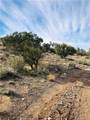 Cedar Hills parcel 6 Horseback Trail - Photo 24