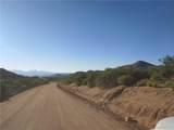 320 Acres Bogles Ranch Road - Photo 6