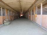 3594 Cross Ranch Rd - Photo 7