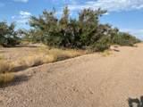 8909 White Hills Road - Photo 2