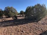 80 Acres Harris Branch Road - Photo 2