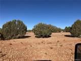 80 Acres Harris Branch Road - Photo 4