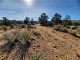 Parcel 83 Frerichs Ranch Road - Photo 12