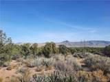 Parcel 83 Frerichs Ranch Road - Photo 4