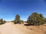 Parcel 83 Frerichs Ranch Road - Photo 5