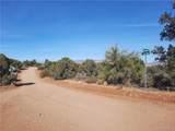 Parcel 83 Frerichs Ranch Road - Photo 6