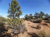Parcel 83 Frerichs Ranch Road - Photo 8
