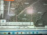39.96ACRES Brovo(Owner Finance Available) Road - Photo 3