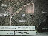 39.96ACRES Brovo(Owner Finance Available) Road - Photo 4