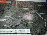 39.96ACRES Brovo(Owner Finance Available) Road - Photo 6