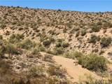 163 acres Banegas Ranch Road - Photo 11