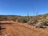 163 acres Banegas Ranch Road - Photo 29