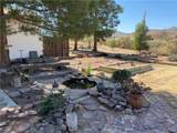 6399 Jack Rabbit Drive - Photo 49