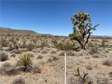 4319 Gold Basin Drive - Photo 9