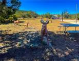43275 Anvil Rock Road - Photo 35