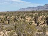 26961 Yucca Road - Photo 28