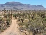 26961 Yucca Road - Photo 29