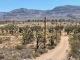 26961 Yucca Road - Photo 30