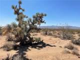 17981 Gene Autry Road - Photo 45