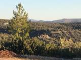 3894 Lookout Canyon Road - Photo 25