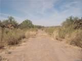 2804 Silver Mesa Drive - Photo 2