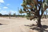 17868 Nolan Drive - Photo 45
