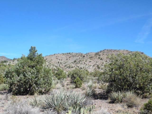 0000 N Blake Ranch Road, Kingman, AZ 86401 (MLS #909614) :: The Lander Team