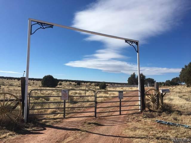 Lot 301 Peaceful Hill, Seligman, AZ 86337 (MLS #938432) :: The Lander Team