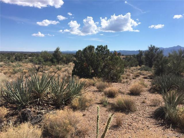 Stephan Rd Lot 62 Cedar Hills Ranches Road, Kingman, AZ 86401 (MLS #950947) :: The Lander Team