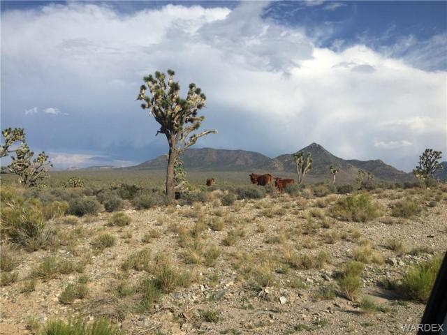 29755 N Powell Drive N, Meadview, AZ 86444 (MLS #951055) :: The Lander Team