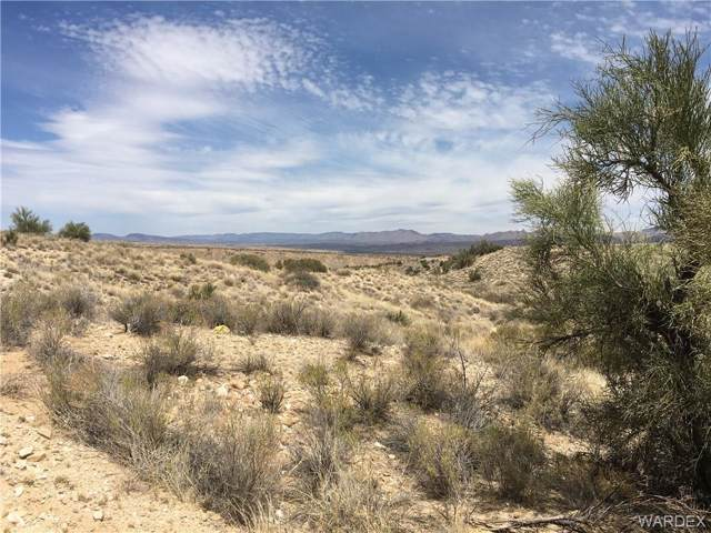 Lot 99 Big Elk Drive, Kingman, AZ 86401 (MLS #951165) :: The Lander Team