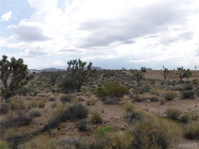 27352 N Hummingbird Drive N, Meadview, AZ 86444 (MLS #951619) :: The Lander Team