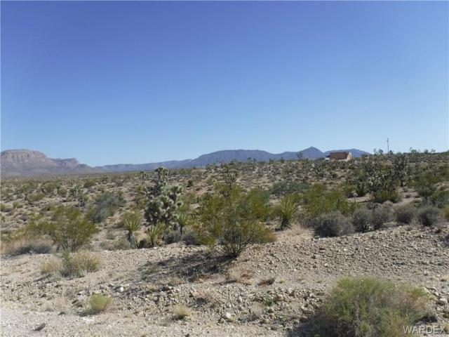 720 W Parkview Drive W, Meadview, AZ 86444 (MLS #951758) :: The Lander Team