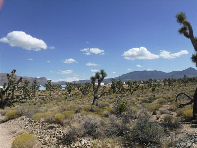 27365 N Apple Drive, Meadview, AZ 86444 (MLS #952366) :: The Lander Team