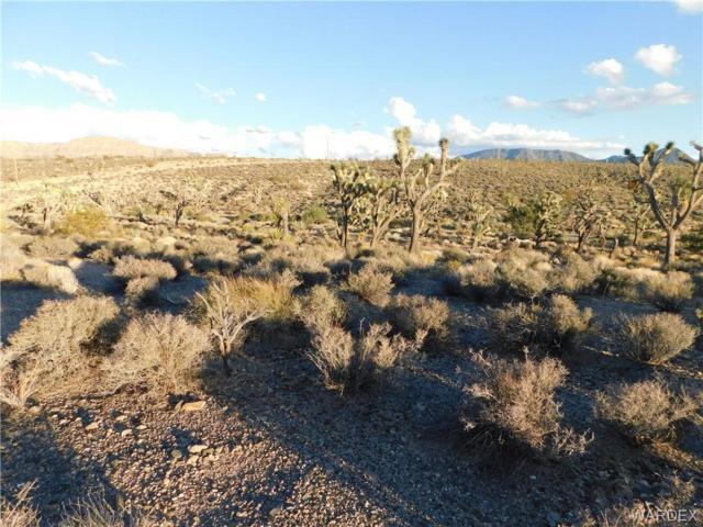 27116 N Tamarisk Street, Meadview, AZ 86444 (MLS #952703) :: The Lander Team